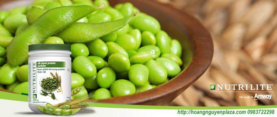 Thực phẩm bổ sung Protein thực vật powder Nutrilite Amway ( Đạm thực vật )